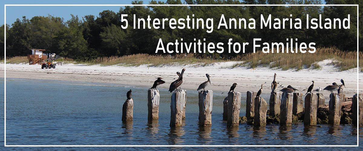 5 Fun and interesting activities for families traveling to Anna Maria Island, FL.