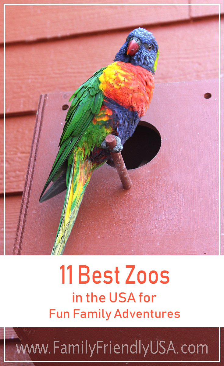 Zoos are a wonderful place to get close to nature. Let your children be enthralled by animals of all sizes at the best zoos in the USA!